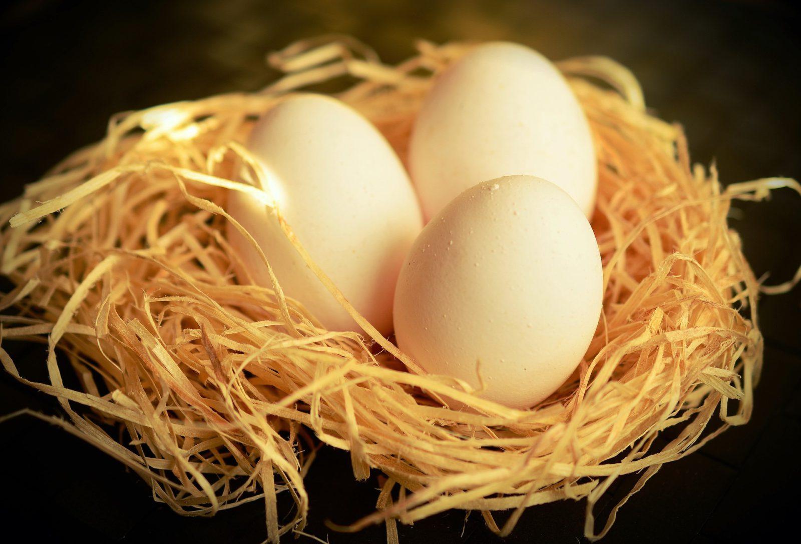 A tojástól a CSR-ig- CSR Szerda Klubest
