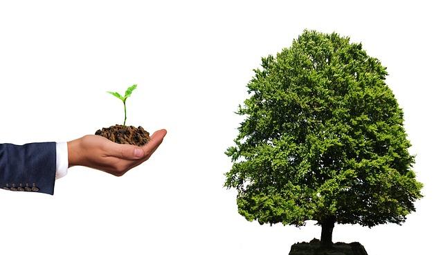 MNB:Zöld befektetés támogatása