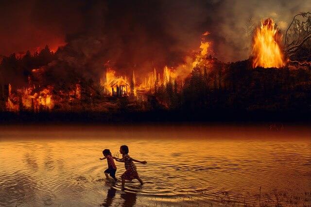 Klímaváltozás: erdőtüzek